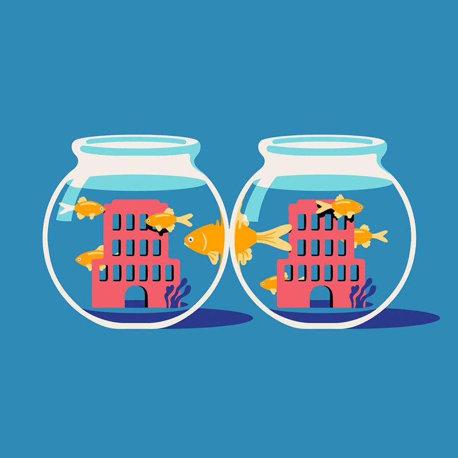 Fish swimming between fish bowls