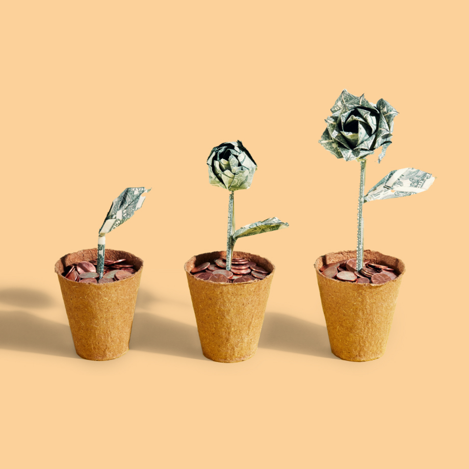 Three potted money trees with pennies instead of dirt