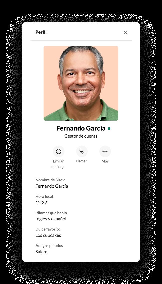 Un perfil de Slack con campos personalizados
