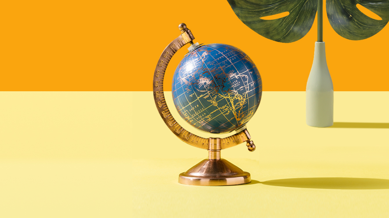 Globe with a plant in the background