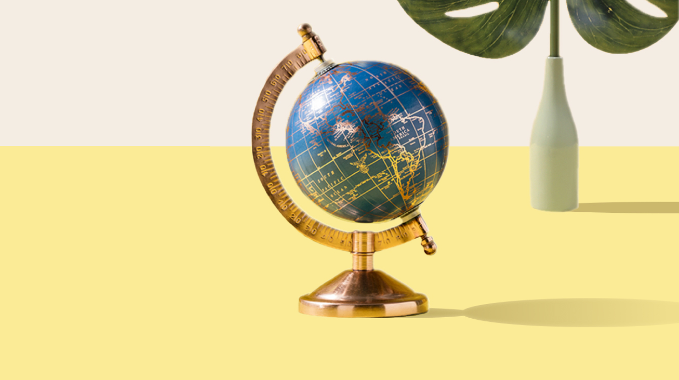 A globe with a plant in the background