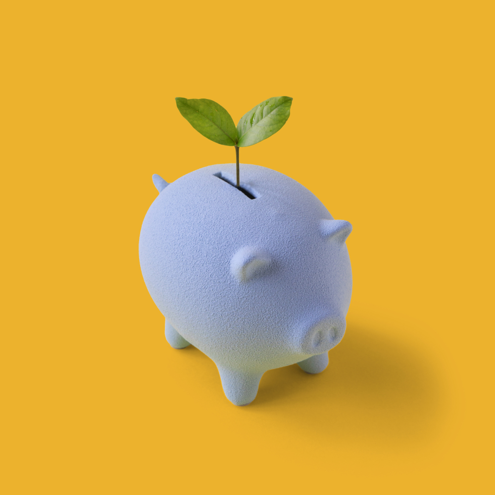 piggy bank with plant sprouting through
