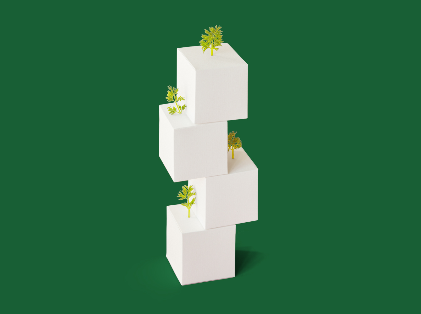 White blocks with trees