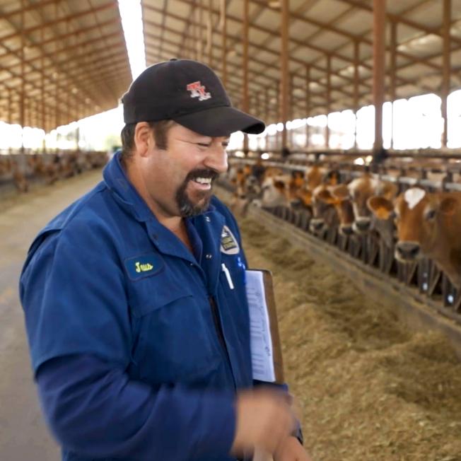 Un hombre con un portapapeles en un granero lleno de vacas
